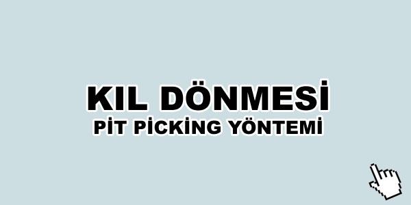kil-donmesi-pit-picking-yontemi